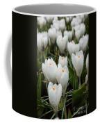 Crocuses 6 Coffee Mug