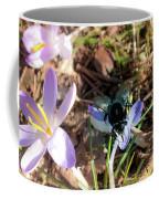 Crocuses And Fly Coffee Mug