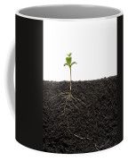 Cross-section Of Soybean Seedling Coffee Mug by Mark Thiessen