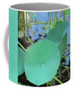 Crossing The Lily Pond Outback Nubmer Two Square Coffee Mug