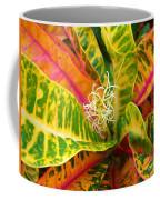 Croton Leaves Coffee Mug