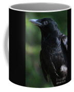Crow-6870 Coffee Mug