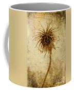 Crown Of Thorns Coffee Mug by John Edwards