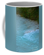 Crystal Waters Coffee Mug