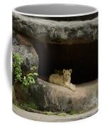Cubs In Cave Coffee Mug