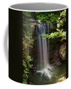 Cucumber Falls Coffee Mug