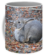 Cuddly Campground Bunny Coffee Mug