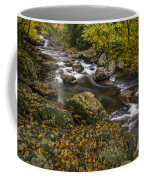 Cullasaja River In Autumn Coffee Mug