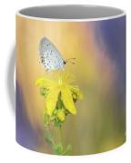 Cupido Argiades Coffee Mug