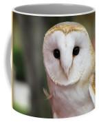 Curious Barn Owl Coffee Mug