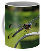 Curious Dragonfly Coffee Mug
