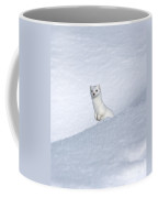 Curious Ermin Coffee Mug by Sandra Bronstein