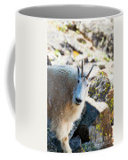 Curious Goat On The Mount Massive Summit Coffee Mug