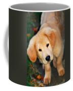 Curious Golden Retriever Pup Coffee Mug