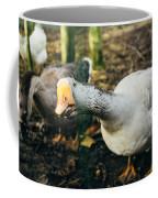 Curious Grey Goose Coffee Mug