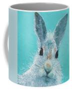 Curious Grey Rabbit Coffee Mug