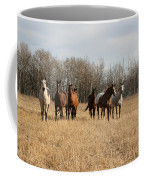 Curious Horses Coffee Mug