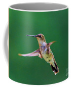 Curious Hummer Coffee Mug