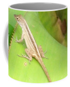 Curious Lizard I Coffee Mug