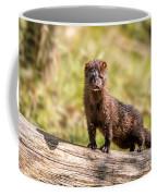 Curious Mink Coffee Mug