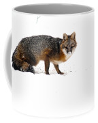 Curious Red Fox In Snow Coffee Mug