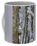 Curious White-backed Woodpecker Coffee Mug