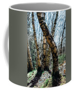 Curved Birch Tree Coffee Mug