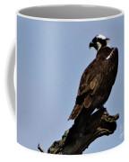 Curved Osprey Coffee Mug
