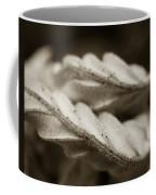 Curves Coffee Mug