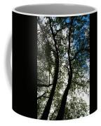 Curvy Trees Coffee Mug
