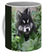 Cute Alusky Puppy In A Bunch Of Plant Foliage Coffee Mug