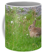Cute And Fluffy Coffee Mug