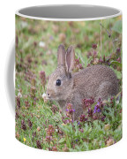 Cute Baby Bunny Coffee Mug