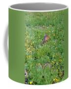 Cute Critter Coffee Mug