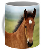 Cute Foal Coffee Mug