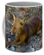 Cute Fox Friend  Coffee Mug by Colette V Hera Guggenheim