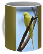 Cute Little Parakeet Resting On A Branch Coffee Mug