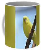 Cute Little Yellow Budgie Bird In Nature Coffee Mug