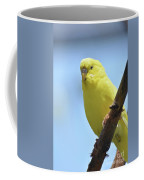 Cute Little Yellow Parakeet In The Rainforest Coffee Mug