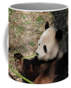 Cute Panda Bear Eating A Green Shoot Of Bamboo Coffee Mug