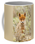 Cute Red Fox Kit Coffee Mug