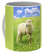 Cute Young Sheep Coffee Mug by Elena Elisseeva