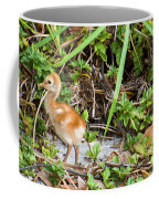 Cutie-beauty Coffee Mug