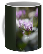 Cyclamen At Lachish 1 Coffee Mug