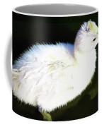 Cygnet  Coffee Mug