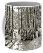 Cypress Evening Coffee Mug