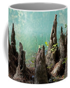Cypress Knees In The Mist Coffee Mug