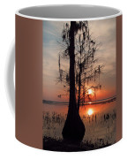 Cypress Sunset Coffee Mug