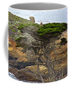 Cypress Tree In Point Lobos State Reserve Near Monterey-california  Coffee Mug