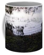 Cypress Trees And Water2 Coffee Mug